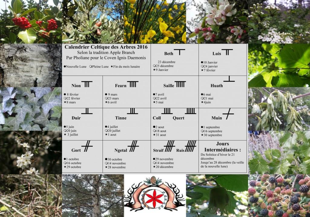 Calendrier-celtique-des-arbres2016