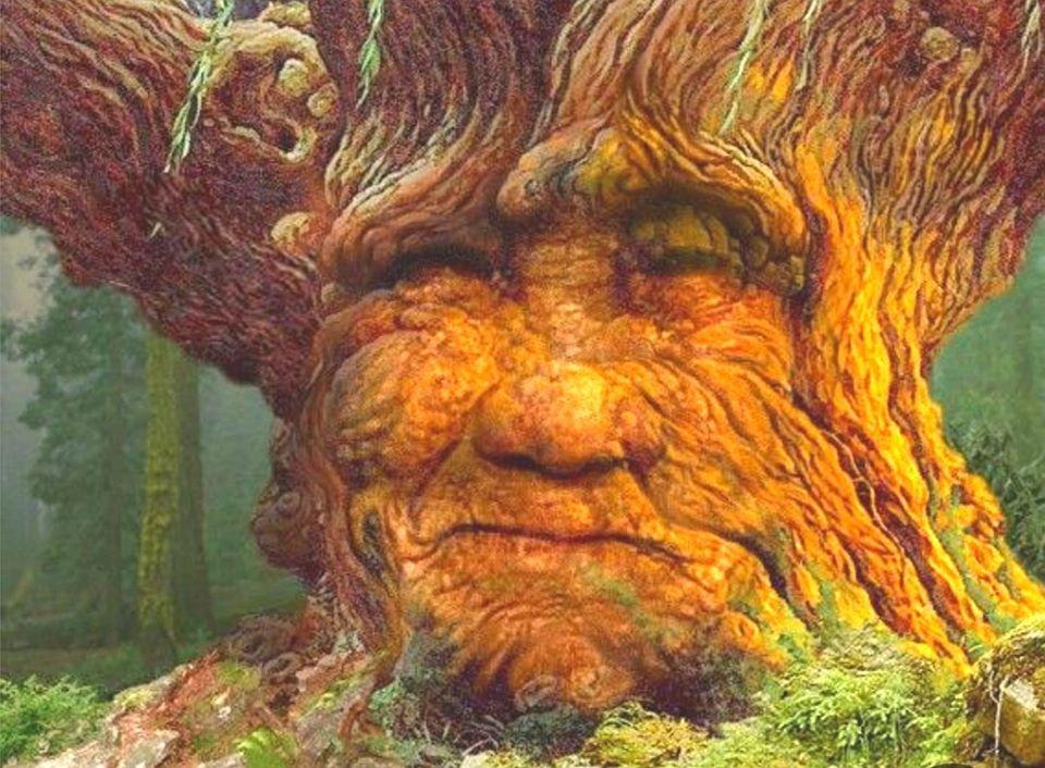 Puissiez-vous être béni… [Tree Mothers]
